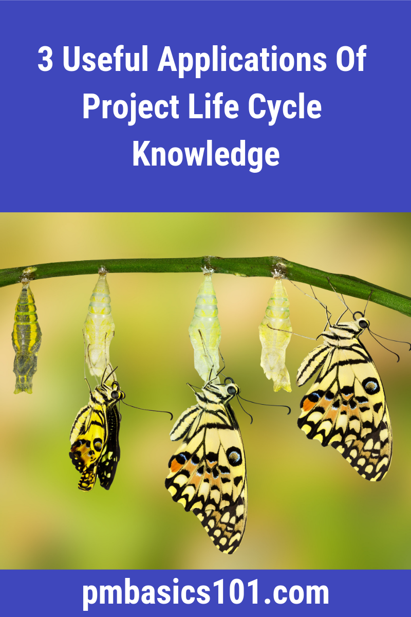 Project Life Cycle is an important concept in project management. Every Project Manager should know and understand it. It helps you structure your work. It makes the project manageable and transparent. Save the pin and click through to learn more.