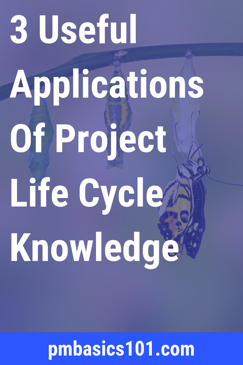 What is a project life cycle? It a series of project stages or phases. Every phase of the project management life cycle represents a deliverable you need to produce to finish a project successfully. Save the pin and click through to learn more.