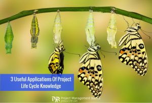 project life cycle in project management as a development of a butterfly