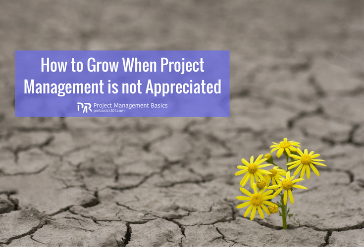 How to Grow When Project Management is not Appreciated