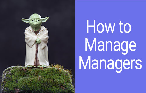 How to Manage Leaders and Lead Senior Project Managers