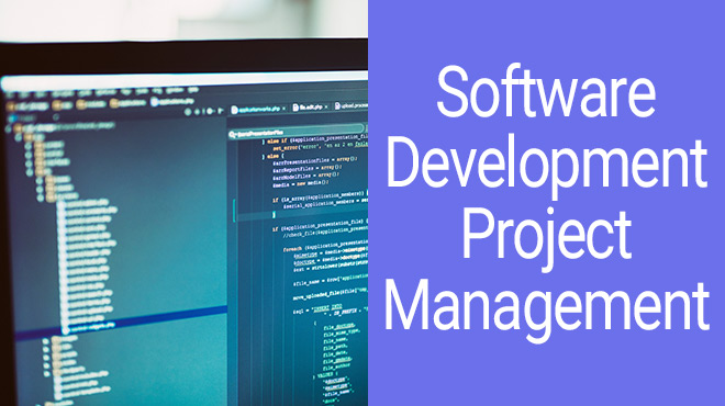 Software Development Project Management Post